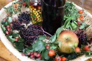 Basket of autumn abundance